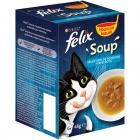 Soep voor de kat: laat je kleine vriend(in) gratis testen!
