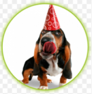 Gratis Smolke verjaardagsmaaltijd voor je hond