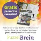 Gratis puzzelboek van Puzzelbrein t.w.v. €11,90