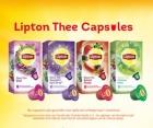 Probeer Lipton thee capsules